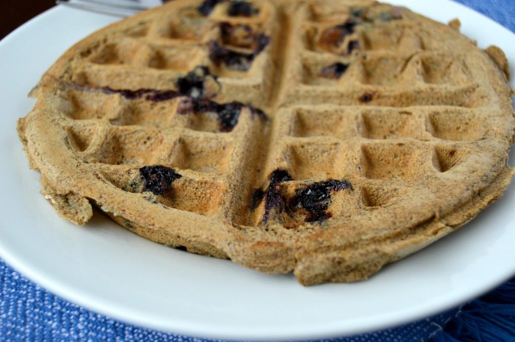 blueberry coconut waffle 6