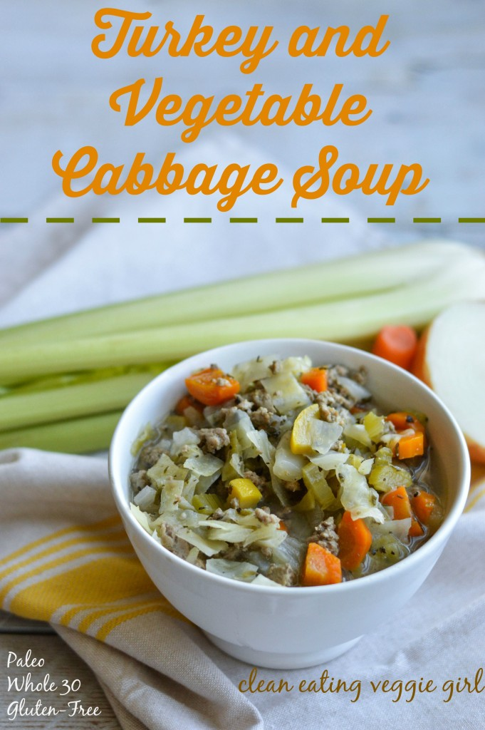 turkey_and_vegetable_cabbage_soup 4 graphic