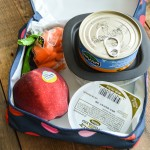 pack_it_lunch_box