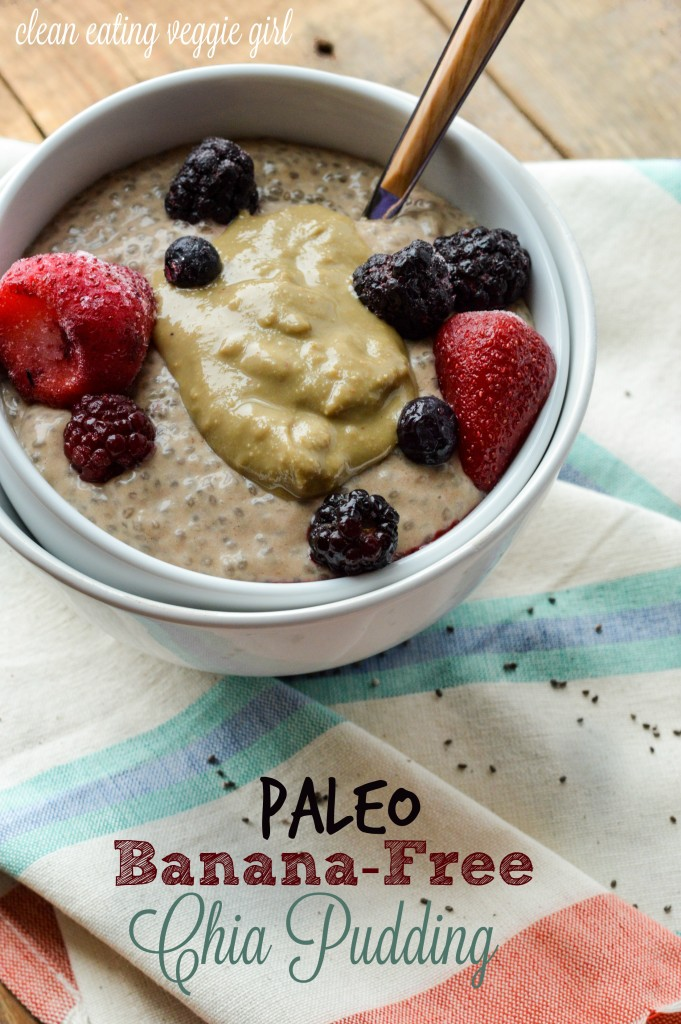 Paleo Banana-Free Chia Pudding {Gluten-Free, Grain-Free, Dairy-Free, Nightshade-Free, Nut-Free} | cleaneatingveggiegirl.com