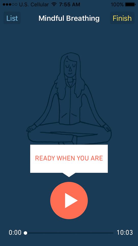 day_in_life_meditatio